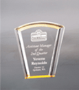Fan Halo Award